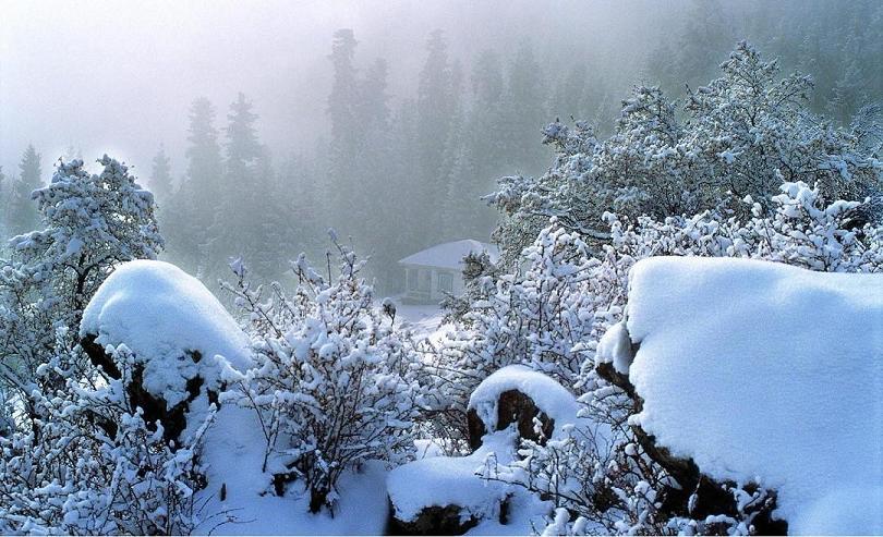 冰天雪地中的雪景图片-雪景图片大